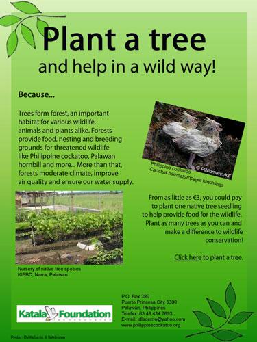 adopt a plant essay